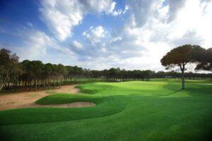 Sueno Golf Club, Pines Course